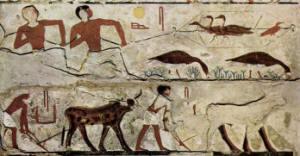 Storia antico Egitto - Secondo Periodo Intermedio